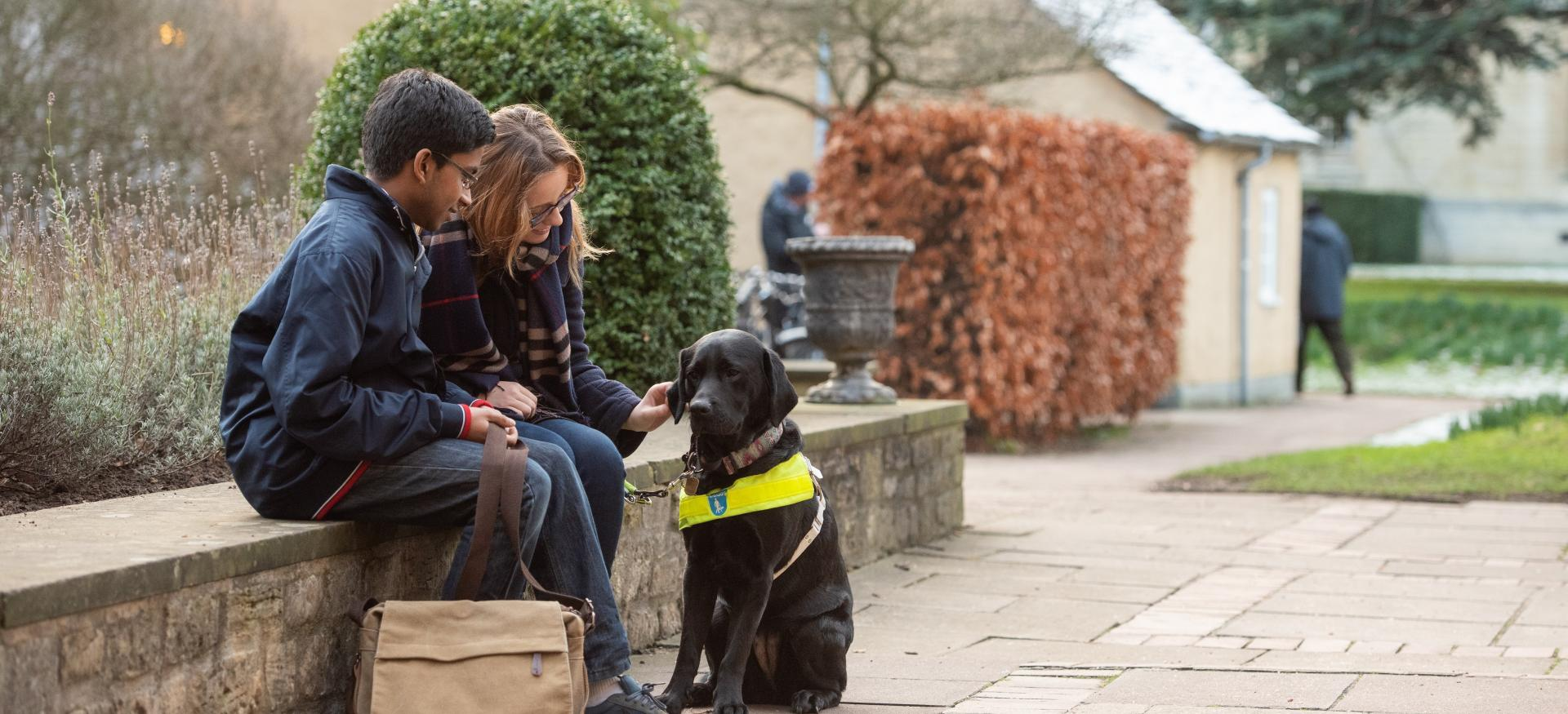 Two students, one with a guide dog, sit on a wall in Trinity College.